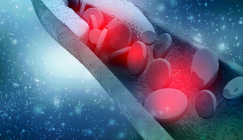 Kardiologie-2845