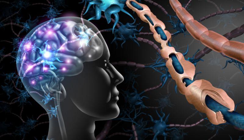 Neurologie-2760